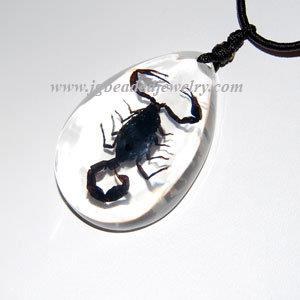 Real Black Scorpion Necklace