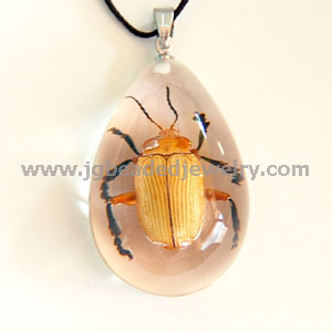 Real Black Legged Leaf Beetle Necklace
