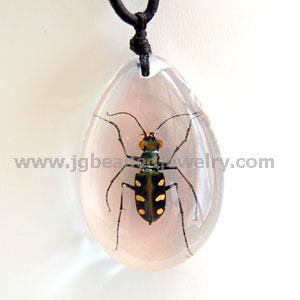 Real Chinese Tiger Beetle Necklace