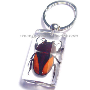 Real Orange and Black Beetle Key Chain