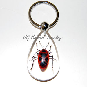 Real Stink Bug Keychain