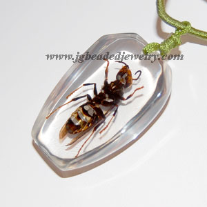 Real Yellow Jacket Wasp Necklace